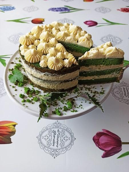 tortaodkoprive_vilicomkrozhrvatsku_nikolinakošćević