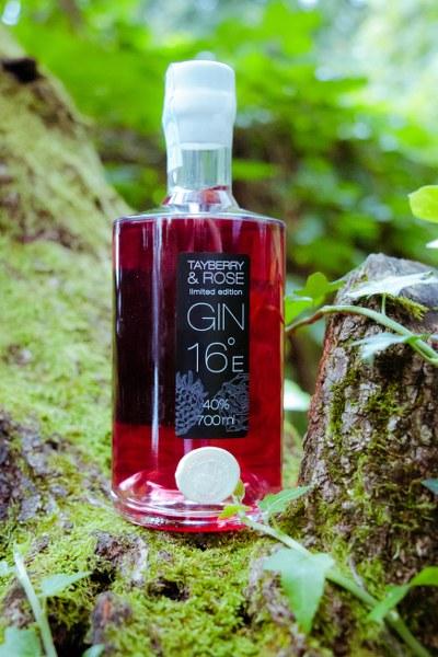 gin_tayberry_vilicomkrozhrvatsku